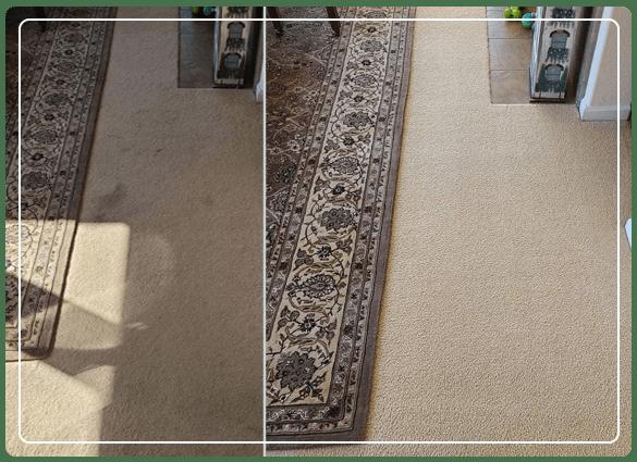 Carpet Cleaning Waterloo